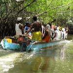 Conchera boat negotiates narrow mangrove channels.