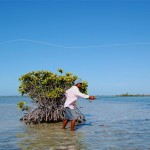 Fishing-guide Marco casts a fly near a clump of red mangrove.