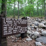 Site of Thoreau's hut at Walden Pond.