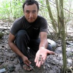 Antonio with mangrove molluscs.