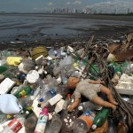 Panama's dilemma: burgeoning city, declining mangroves, and a mountain of trash.